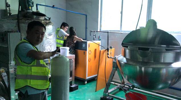 食品厂用蒸汽发生器